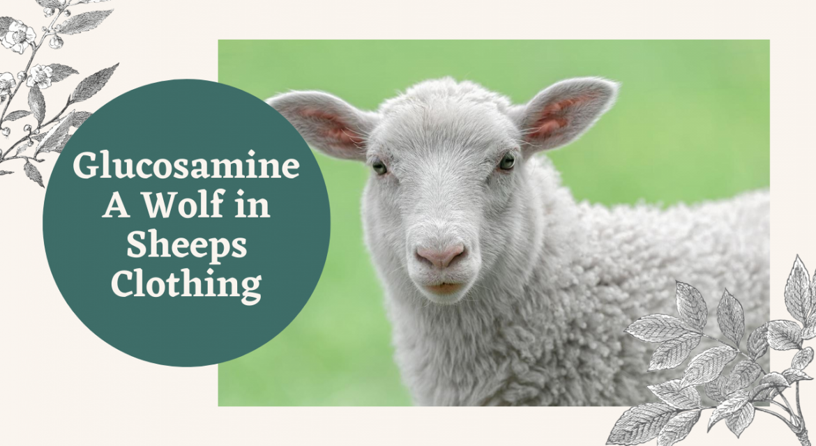 GLUCOSAMINE – A WOLF IN SHEEP'S CLOTHING