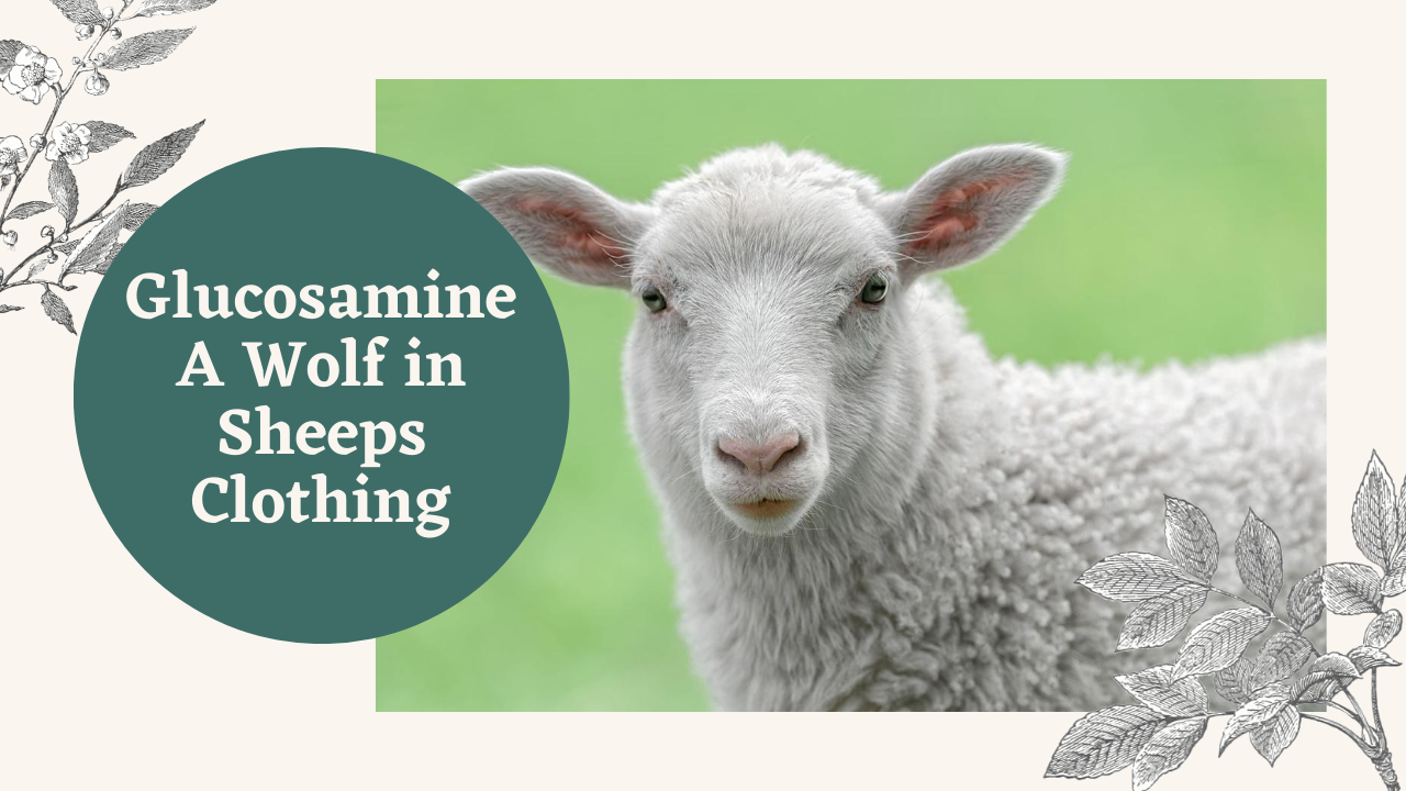 Glucosamine A Wolf in Sheeps Clothing