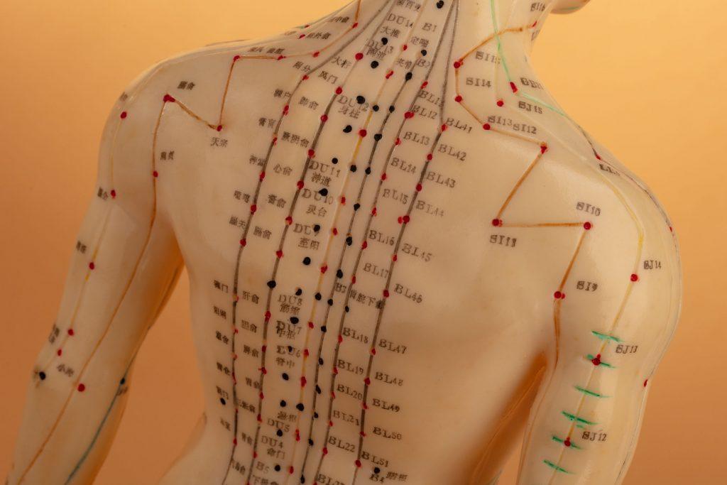 Fix Chronic Back Pain